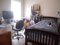 bedroom in one bedroom