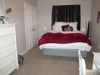 Bedroom in large 1 bedroom apt